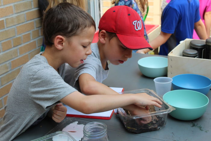 5 Life Skills Learned at Camp